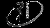 Logo-DGZMK2-Mono